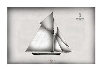 Atalanta 1881